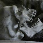 В Красноярском крае рядом с сотнями коровьих черепов нашли скелет человека
