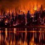 Ущерб от лесных пожаров в Калифорнии оценили в $100 млн
